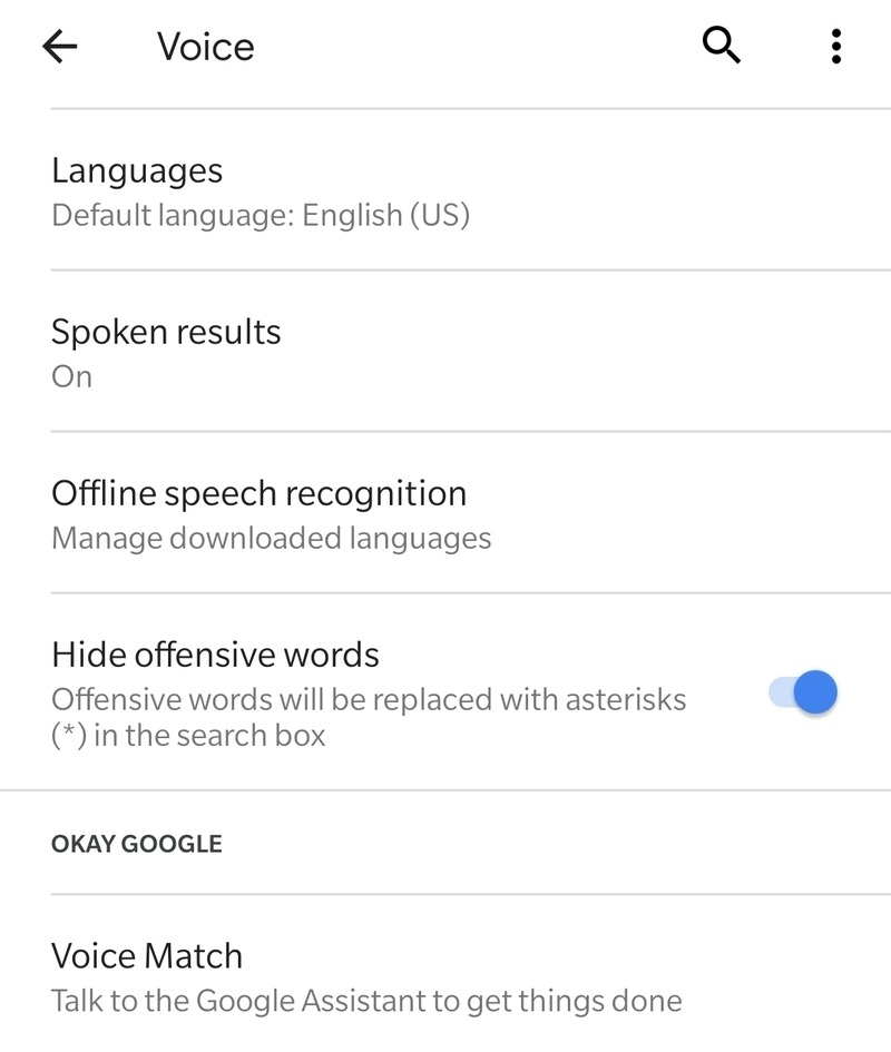 Okei Google Voice Match