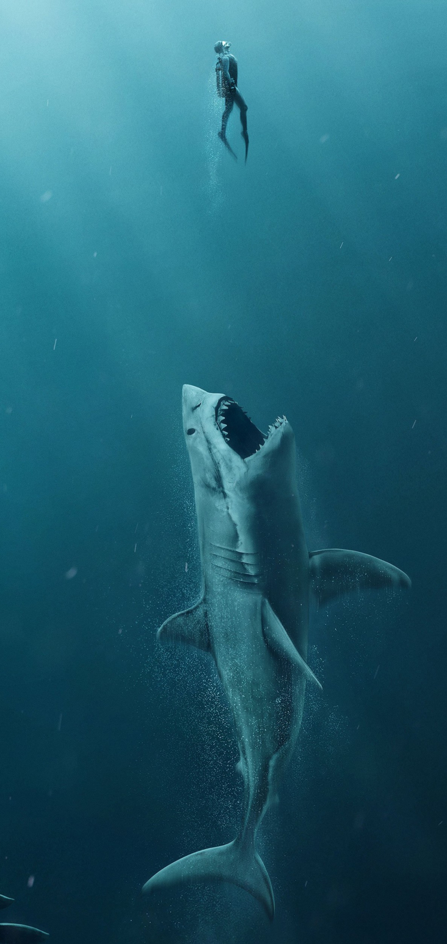Köpəkbalığı Note 10 Plus HD Divar kağızları